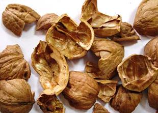 wallnut-shell-ceviz-kabugu